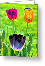 Tulips - Perfect Love - Photopower 2168 Greeting Card