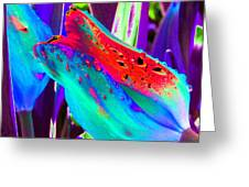 Tulips - Perfect Love - Photopower 2173 Greeting Card