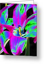 Tulips - Perfect Love - Photopower 2175 Greeting Card