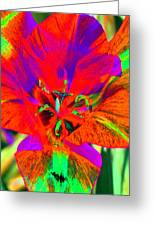 Tulips - Perfect Love - Photopower 2179 Greeting Card