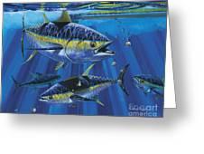 Tuna Blitz Off0039 Greeting Card
