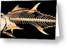 Tuna Fish Skeleton Greeting Card