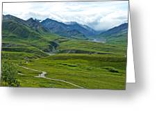 Tundra View From Eielson Visitor's Center In Denali Np-ak  Greeting Card