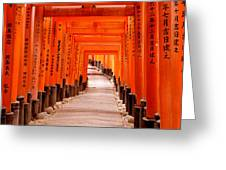 Tunnel Of Torii Gates, Fushimi Inari Greeting Card