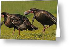 Turkey Gobble Greeting Card