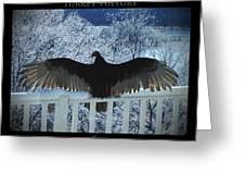 Turkey Vulture Sunning Greeting Card