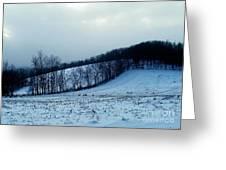 Turkeys In A Winter Field Greeting Card