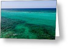 Turks Turquoise Greeting Card by Chad Dutson