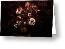 Turner's Flowers Greeting Card