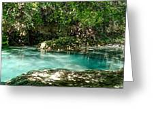 Turquoise Forest Pond On A Summer Day No3 Greeting Card