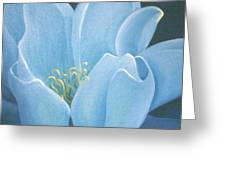 Turquoise Waterlily Greeting Card
