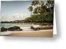 Turtle Beach Greeting Card by Jason Bartimus