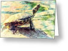 Turtle Brave Greeting Card