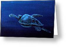 Turtle In The Red Sea Greeting Card