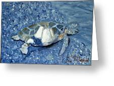 Turtle On Black Sand Beach Greeting Card