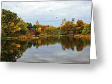 Turtle Pond - Central Park - Nyc Greeting Card
