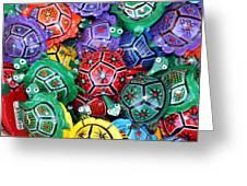 Turtles Turtles Everywhere Cozumel Mexico Greeting Card