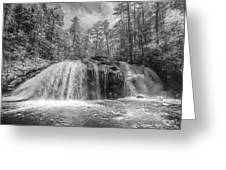 Turtletown Creek In Black And White Greeting Card