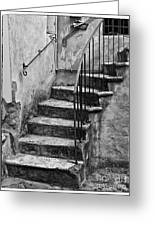 Tuscan Staircase Bw Greeting Card