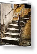 Tuscan Staircase Greeting Card