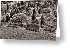 Tuscan Vinyard Greeting Card