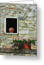 Tuscan Window And Flower Pot Greeting Card