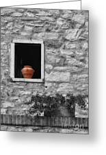 Tuscan Window And Pot Bw And Color Greeting Card
