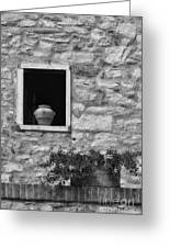 Tuscan Window And Pot Greeting Card