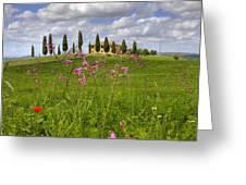 Tuscany - Pienza Greeting Card