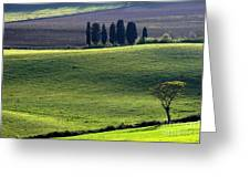 Tuscany Green Hills Greeting Card by Arie Arik Chen
