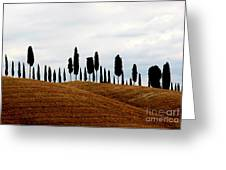Tuscany Hill Greeting Card by Arie Arik Chen