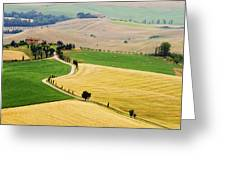 Tuscany Summer Greeting Card