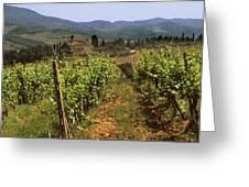 Tuscany Vineyard No.2 Greeting Card