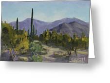 The Serene Desert Greeting Card