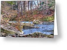 Twenty Mile Creek Greeting Card