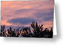 Twilight Beauty Greeting Card