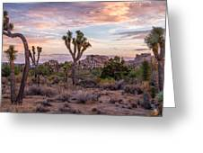 Twilight Comes To Joshua Tree Greeting Card