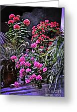Twilight In The Courtyard Greeting Card