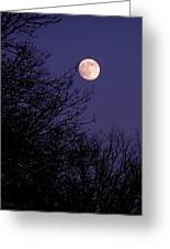 Twilight Moon Greeting Card by Rona Black