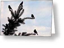 Twilight Silhouette Greeting Card
