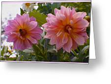 Twin Delight Greeting Card