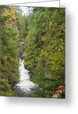 Twin Falls Cascade II Greeting Card