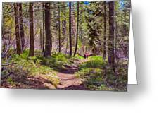 Twisp River Trail Greeting Card