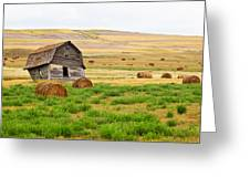 Twisted Barn On Canadian Prairie, Big Greeting Card
