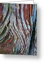 Twisted Colourful Wood Greeting Card