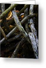 Twisted Nature I Greeting Card