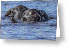 Two African Elephants Swimming In The Chobe River Greeting Card