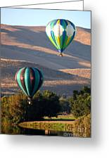 Two Balloons In Morning Sunshine Greeting Card