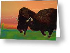 Two Bison Greeting Card