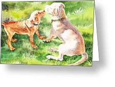 Two Brothers Labradors Greeting Card